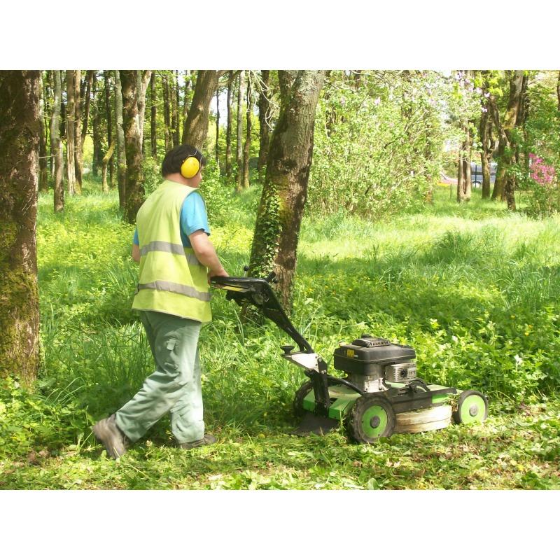 entretien des espaces verts entreprises dans le morbihan