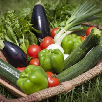 Le panier de légumes bio